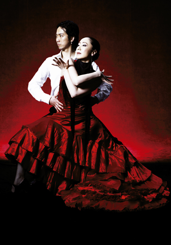 http://www.paseo-flamenco.com/guide/zenkoku/arteysolera_main_photo.jpg